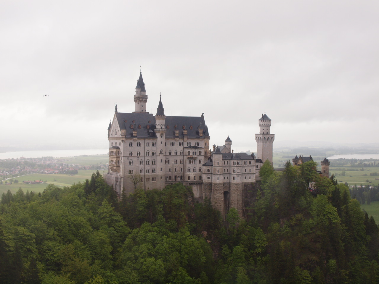 castle neuschwanenstein The magnificent royal castles neuschwanstein castle and hohenschwangau castle are only a few kilometres away from füssen visiting them is pleasant and edifying.