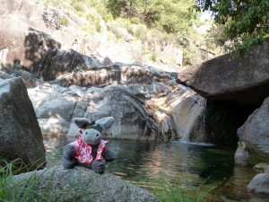 The pool at the waterfall