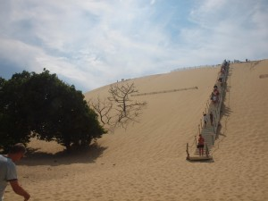 The stairs to the top of the dune.